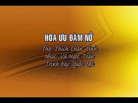 Hoa Ưu Đàm Nở [karaoke] - Quốc Đại