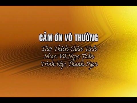 Cảm Ơn Vô Thường [karaoke] - Thanh Ngọc