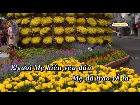 Mẹ hiền yêu dấu - Thanh Ngọc