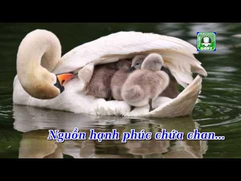 Xem video Vu Lan Về Nhớ Mẹ