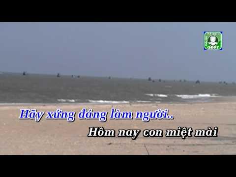 Tinh Cha DQ - Trần Cường