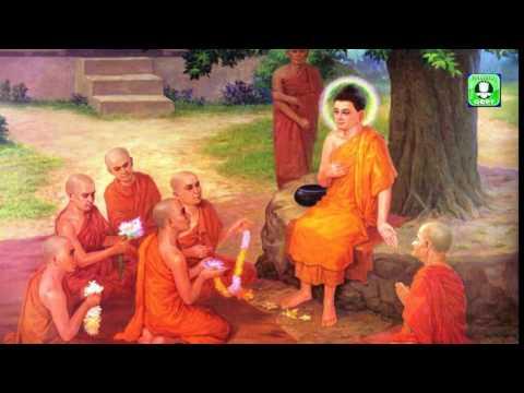 Đạo Phật là Đạo Hiếu -