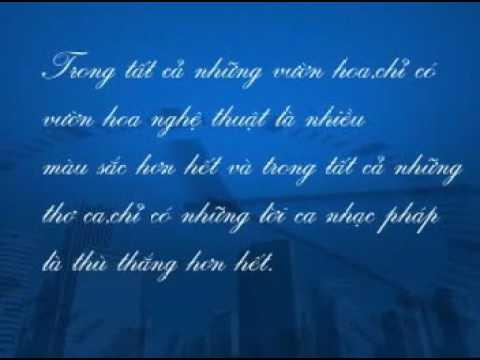 [Tân Cổ Phật Giáo] Những Đóa Sen Hồng - Giới thiệu -