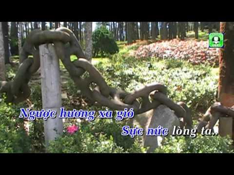 Trúc Lâm Phượng Hoàng Karaoke -