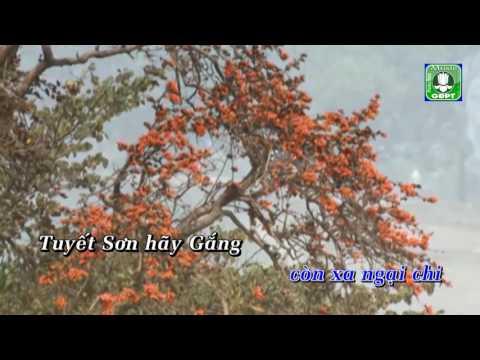 15 Tuyết Sơn -