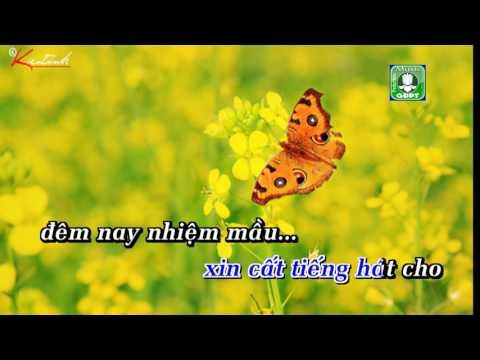 Bướm bay vườn cải hoa vàng Karaoke -