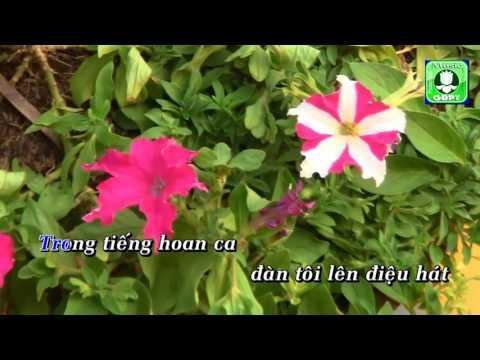 Bai thuong ca sinh nhat Karaoke -