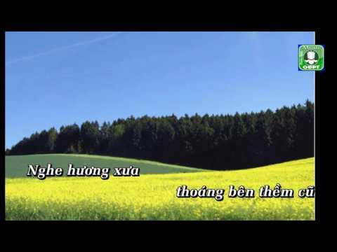 Hoài Cảm Phan Hồng Liên Karaoke -
