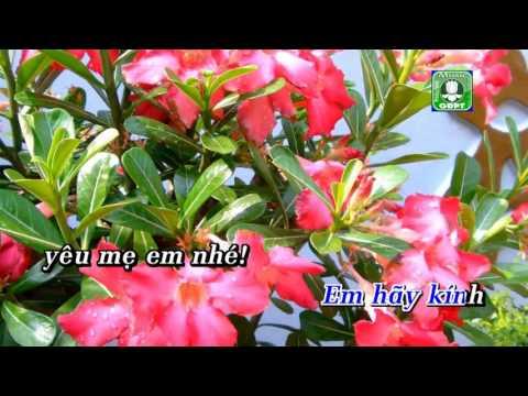 Mẹ hiền Vien Nguyet Karaoke -