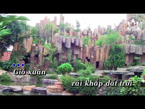 Xuân chánh niệm - Nguyễn Duyên Quỳnh
