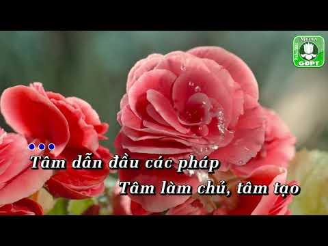 Tâm New cover [Karaoke] -