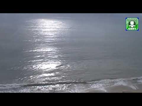 Mẹ  trùng dương - Trang Mỹ Dung