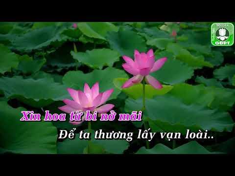 Hoa từ bi VTH [Karaoke] -