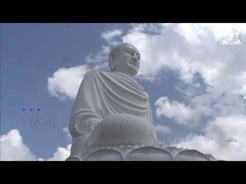 Chiếc lá thu rơi - Nguyễn Duyên Quỳnh