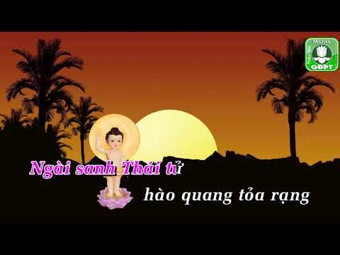 Sáng Tỏa Hoa Đàm - Bonneur Trinh
